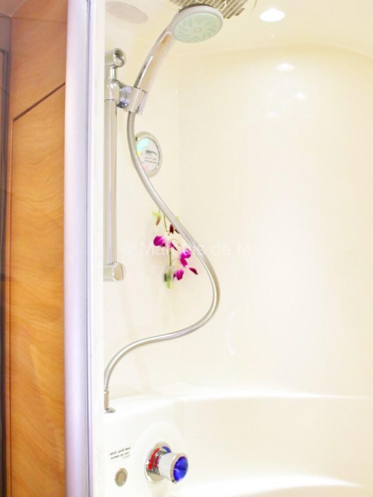 A380 showers シャワールーム エミレーツ ファーストクラス 蘭 flower