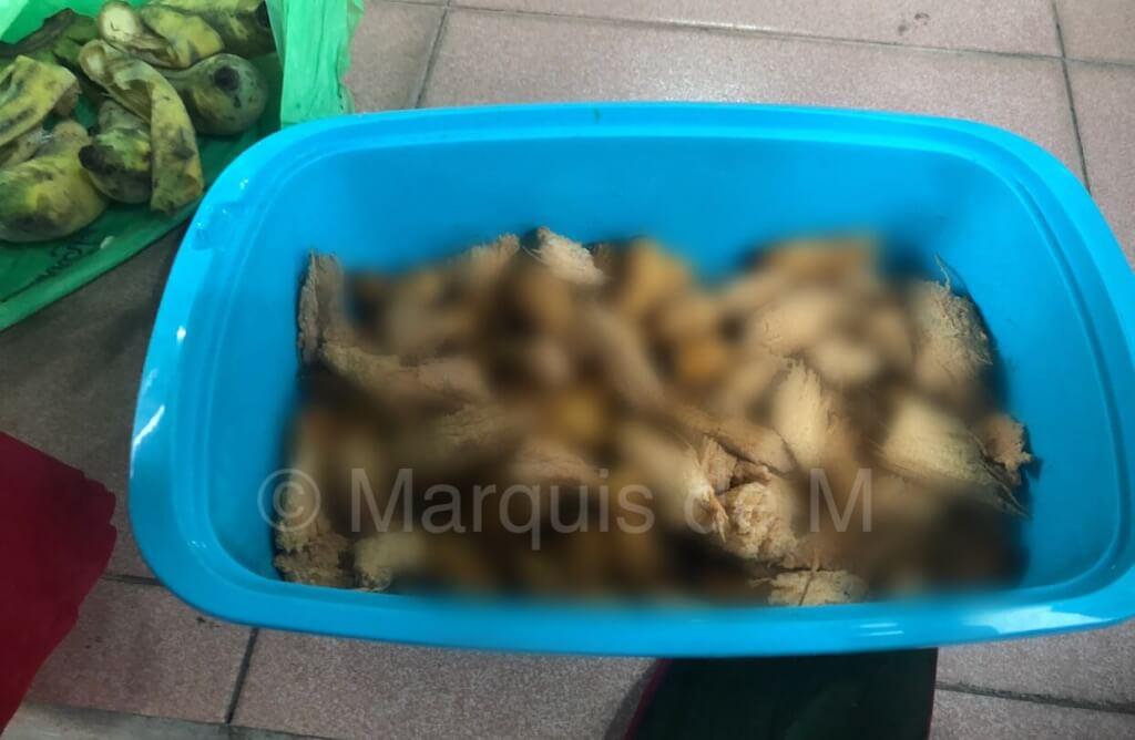 サゴ虫,幼虫,コタキナバル,ボルネオ島,サバ州,マレーシア